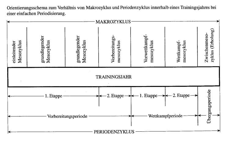 Periodisierung