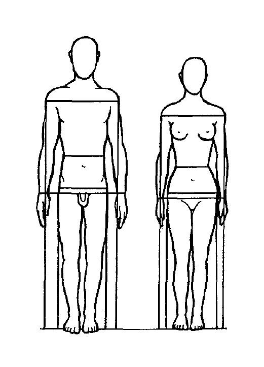 Körperbaumerkmal
