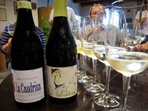 Piemont Asti Flaschen und Glaeser
