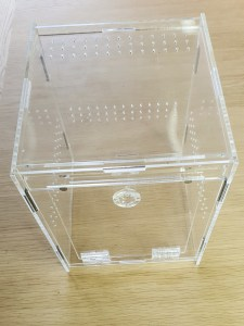 see through Jumping spider enclosure for sale uk made of organic plastic with one door to the side and enough ventilation