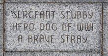 Sgt. Stubby Grave Stone