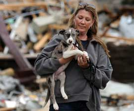 animal and natural disaster rescue