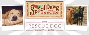 SpoofDawg to the Rescue Photo Calendar Contest