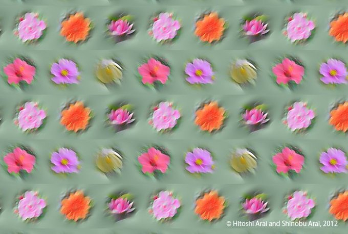 Flower illusion