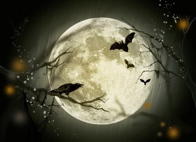 halloween-72939_640
