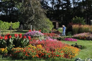 Garden in full bloom