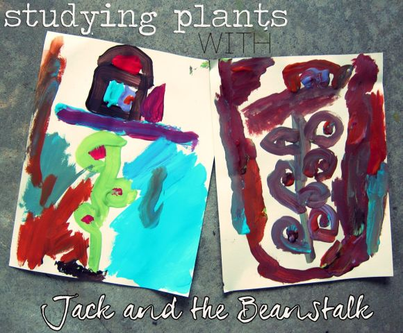 studying plants with jack and the beanstalk