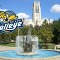 Toledo Walleye – Better Know A Team