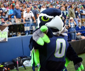 Blitz, The Seattle Seahawks Mascot, In Serious Condition After Crashing Into American Airlines Flight – Sportsverse