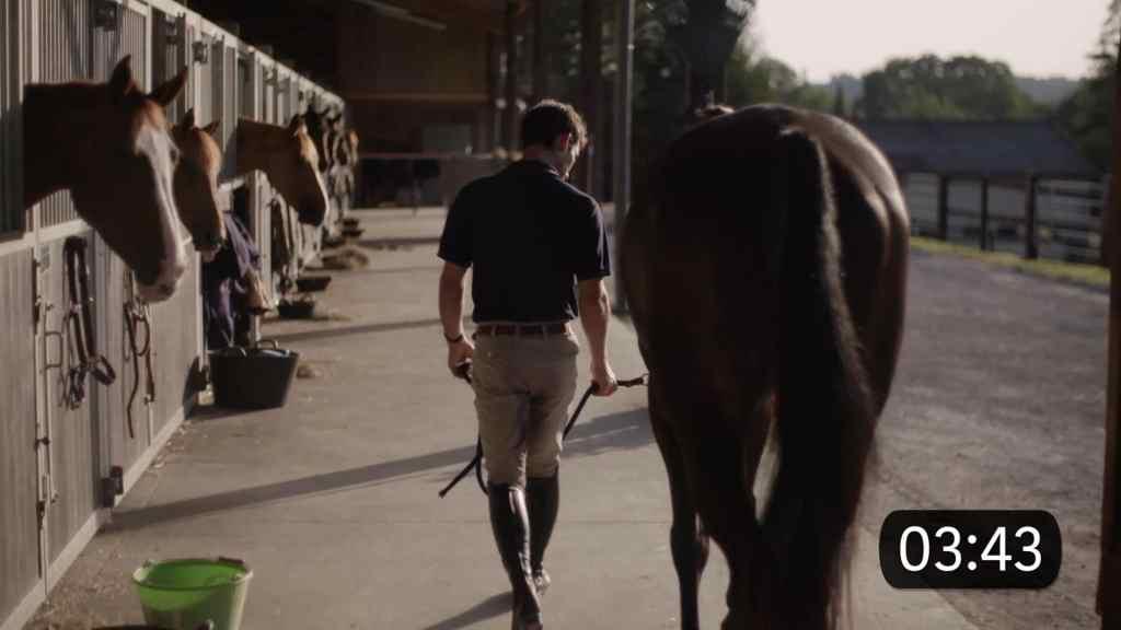 Comment choisir son cheval ?
