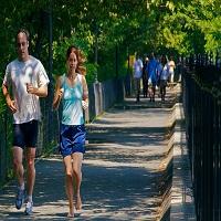 Regime et sport pour faire baisser son taux de cholestérol. Un regime alimentaire équilibrée devrait pouvoir faire baisser son cholestérol