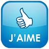2011-06-21-bouton-jaime-fb