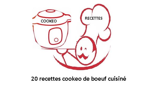 20 recettes cookeo boeuf cuisiné au cookeo