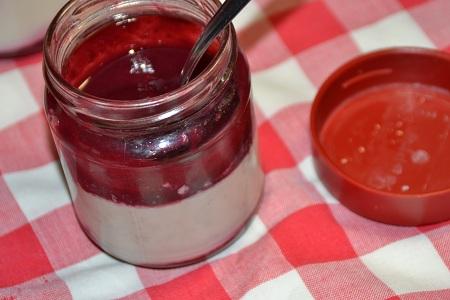 Pannacotta coulis fruits rouges recette cookeo
