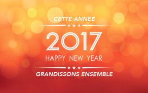 bonne_annee_societe_kinic_2017