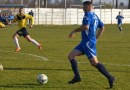 "Liga a V-a (Seria A), etapa a  14-a: Liga și Goldiș s-au întors cu ""duble"" la Șofronea, respectiv Nădlac"