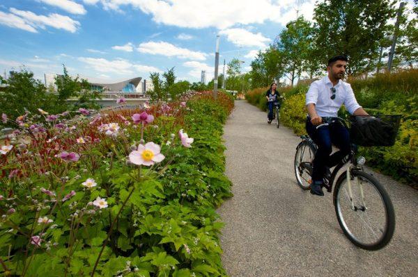 London 2012 - Parc Olympique - piste cyclable