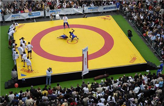 Paris 2012 - lutte