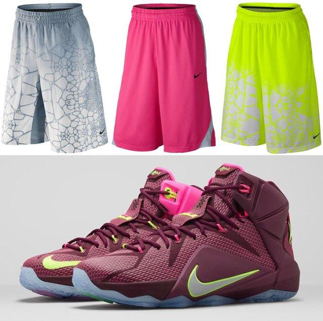 premium selection db61a 050df Nike LeBron 12 Double Helix Shorts | SportFits.com