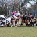 Rugby: Universitatea Cluj, zdrobită de Timișoara Saracens