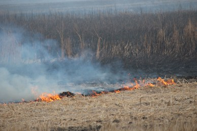From tilled CRP acres to burning habitat, the landscape across our native prairie is changing quickly.