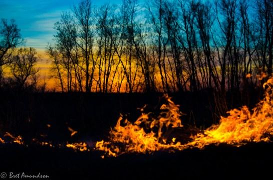 51313 - milan fd sunset flames