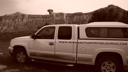 Mika on truck caption