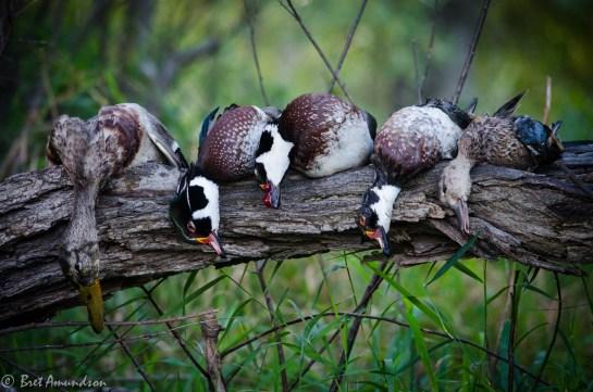 92613 - pete bret darrin woodie hunt