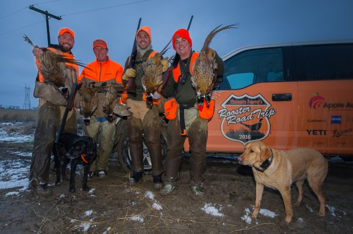 Bret Amundson, Karl Gunzer from Purina, Anthony Hauck from Pheasants Forever and Jared Wiklund from Pheasants Forever pose with wild South Dakota roosters, along with Wiklund's black lab Koda, and Amundson's yellow lab Mika.