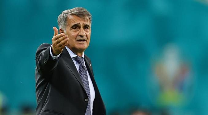 Turkey coach blames many factors for Euro 'unacceptable performance'