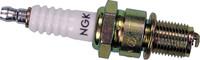 BR9ES Spark Plugs