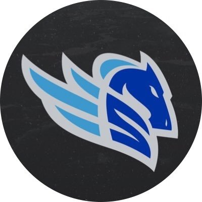 Salt Lake Stallions Team Logo