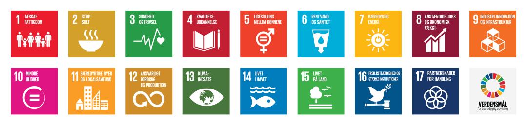 FNs 17 Verdensmål - Sport & Profil