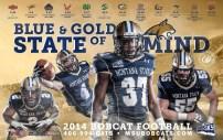 Montana State Football Poster