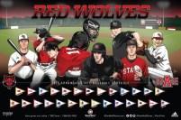 Arkansas State Baseball
