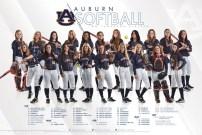 Auburn Softball 2