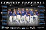 McNeese Baseball