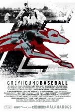 U Indy Baseball