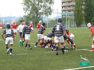 Kunstrasen Rugby