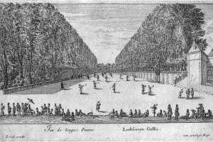 Focus sur les sports d'origine française oubliés !