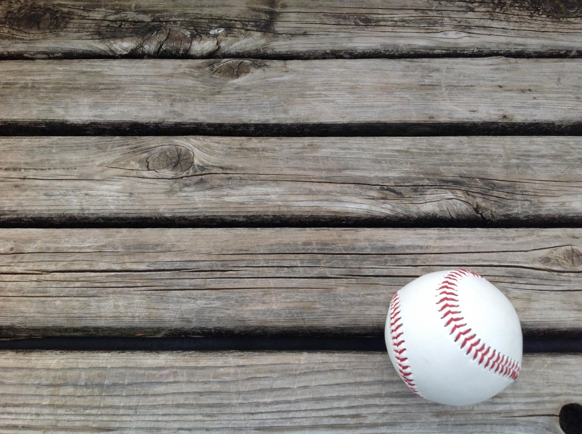 野球 東北 2020 中継 大会 高校