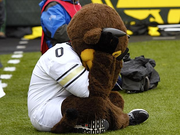 Image result for sad mascots