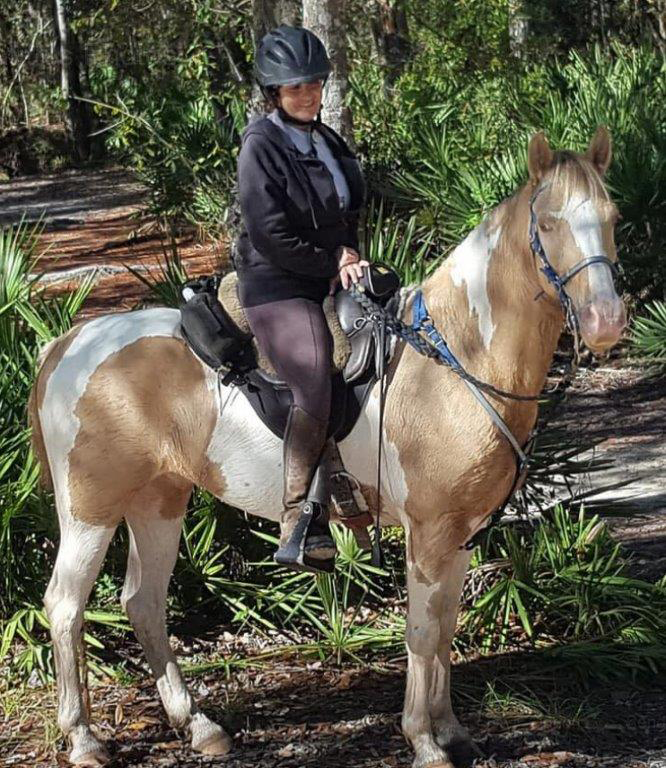 Equestrian horse saddle rider trail