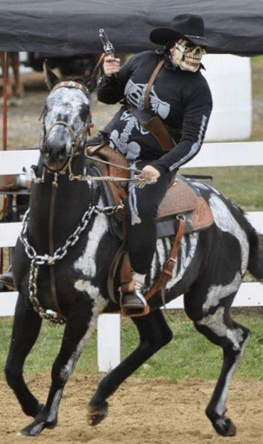 Equestrian horse saddle rider