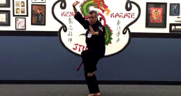 How to do Kenpo Karate Stance Set 2
