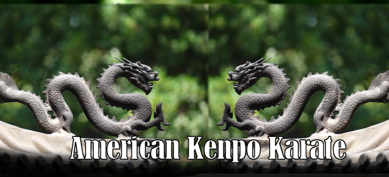 American Kenpo Karate Techniques and Requirements all ranks