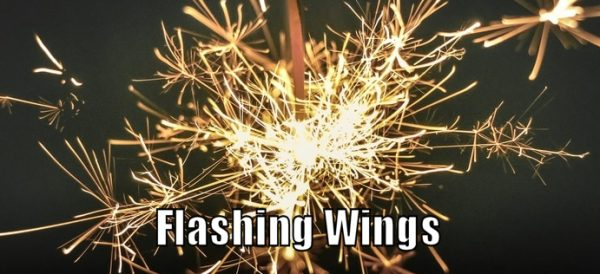 How to do Flashing Wings Self Defense Technique