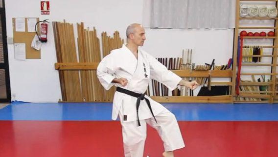 How to do Gedan Otoshi uke in Traditional Karate