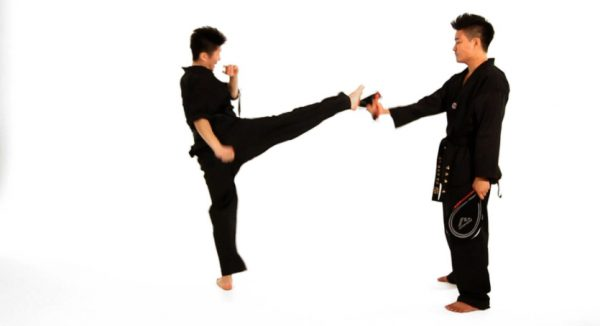 How to Do a Roundhouse Kick