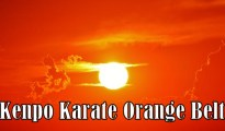 American Kenpo Karate Orange Belt techniques and requirements